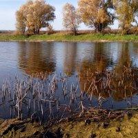 Осенняя река :: Александр Алексеев