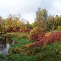 Осенние краски :: El Кондукова