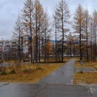 Осень в городе.. :: Леонид Балатский