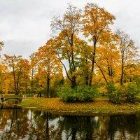 Осень в Царском селе :: Михаил Бояркин