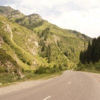 Алматинские горы :: Алёна Князева