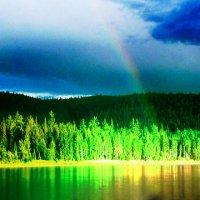На закате после дождя :: Ирина Костарева