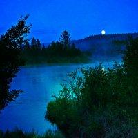 Лунная ночь :: Ирина Костарева