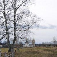 Весна :: Михаил Молодкин