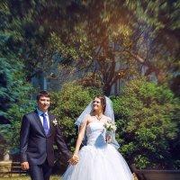 Дмитрий и Олеся :: Анастасия Костромина