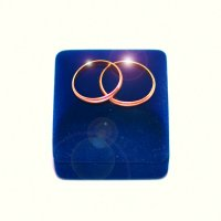 Свадебные кольца :: Геннадий Тимохин