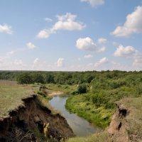 Саратовская область_вниз по реке Медведица :: Андрей ЕВСЕЕВ