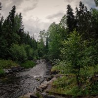 Берега лесной реки :: Евгений Плетнев
