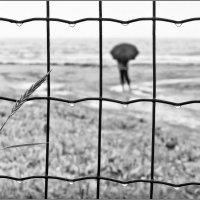 Дождливое одиночество :: Андрей Кровлин