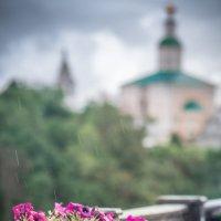 Дождливое путешествие :: Александра Гаранькина