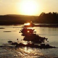 Дорога к солнцу... :: Татьяна Аистова