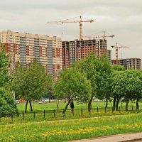 Город растёт :: Олег Попков
