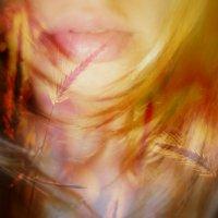 Поцелуй осени :: Kiss Fire