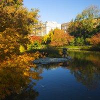Осенние краски :: Galina Kazakova