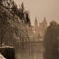 зимний туман :: Елена Назарова