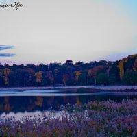 Сумеречный пейзаж :: Ольга Возиян