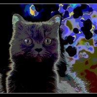 Луна и коты :: Victor Vinocurov