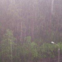 студенческий дождь :: Анастасия Турбал