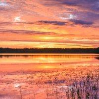 Озеро Родионовское :: Борис Устюжанин