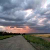 Дорога в царство дождя. :: Marina Timoveewa