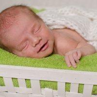 Фотография новорожденных :: Надежда Боровая