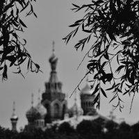 ... :: Евгений Алексеев