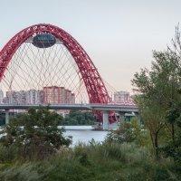 Живописный мост вид 1 :: Борис Калюжный