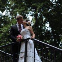 Свадьба Анны и Ильи :: Ирина Заболотная