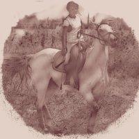 Horse 5 :: Юрий Goa