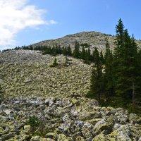 Лучше гор, могут быть только горы... :: Евгений Юрченко