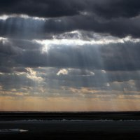 Свет во тьме :: Сергей Молибог