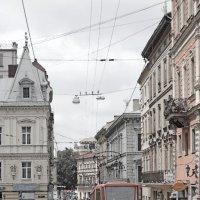 Львівський трамвай :: Олег Боголюбов