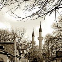 Мечеть на старой улице :: Олег Боголюбов