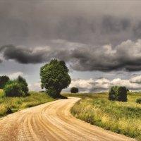 Извилистый путь.... :: Елена Kазак
