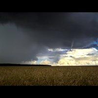 поле, русское поле :: Андрей Ракита