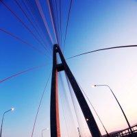 Мост на остров Русский. Владивосток :: Анна Ерохина