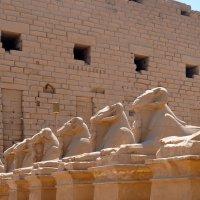 Карнакский храм, Луксор :: Елена Гумерова