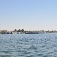 Священная (в кавычках) река Нил :: Елена Гумерова