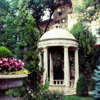 Красота старого парка :: Ксения Сутырина