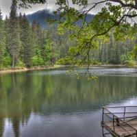 Озеро Сыневир, Закарпатская область :: Юрий Мазоха