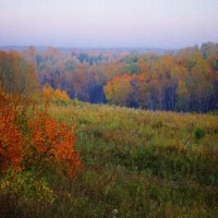 Осенний пейзаж :: Игорь Третьяков