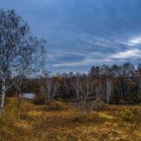 Октябрь уж наступил-уж роща отряхает,последние листы с нагих своих ветвей ... :: Алексей Мезенцев