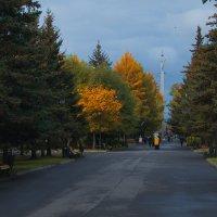 Осень Рыбинск :: Александр Ребров