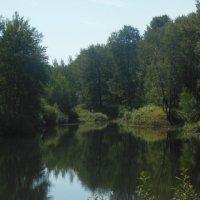 Озеро в парке :: Kseniya Merkulova