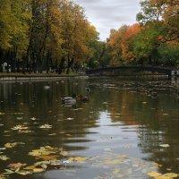 В парке :: Татьяна Панчешная