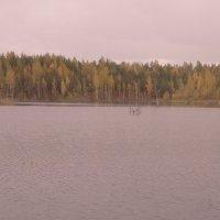 грустная осень :: Михаил Жуковский