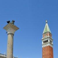 Венецианские вертикали :: Ольга
