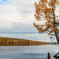 Осень на Южном Урале :: Вячеслав Васильевич Болякин