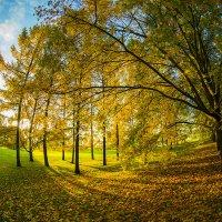 Москва. Коломенское. Осень. :: Игорь Герман