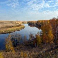 Река  Омь :: Геннадий С.